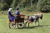 Leusden -  De Stichting Behoud Oude Werktuigen organiseert de jaarlijkse Oogstdag op landgoed Den Treek.  Pony en dresseerkar