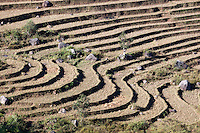 Myanmar, (Burma), Shan State, Kengtung: Terraced rice fields and Shan hills | Myanmar (Birma), Shan Staat, Kengtung: Reisterrassen im Shan-Hochland
