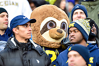 College Park, MD - NOV 11, 2017: A Michigan Wolverines fan dressed as a Wolverine during game between Maryland and Michigan at Capital One Field at Maryland Stadium in College Park, MD. (Photo by Phil Peters/Media Images International)