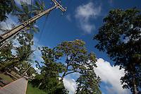 Vila Progresso.<br /> <br /> Com a criação da Convenção sobre Diversidade Biológica - CDB -  tratado da Organização das Nações Unidas,  e a ratificação do protocolo de Nagoia em  2010,   se inicia um processo de organização para os  Povos e Comunidades Tradicionais em  busca de maior  qualidade de vida não apenas na Amazônia, mas em todo  mundo. <br /> <br /> Assim, em dezembro de 2013 a Rede Grupo de Trabalho Amazônico – GTA, em parceria com a Regional GTA/Amapá, o Conselho Comunitário do Bailique, Colônia de Pescadores Z-5, IEF, CGEN/DPG/SBF/MMA, juntamente com 36 comunidades do Arquipélago do Bailique, inicia o processo de criação do primeiro protocolo comunitário na Amazônia, instrumento que regula relações comerciais amparado por leis ambientais, estabelecendo o mercado justo, proteção da biodversidade,  entre outros . <br /> <br /> Desta forma, após dezenas de encontros, debates e oficinas,  as Comunidades Tradicionais do Bailique, articuladas pelo GTA,  se reuniram durante os dias 26, 27 e 28 de fevereiro, onde os moradores, em assembléia geral ordinária, definiram sua personalidade jurídica   criando uma associação para atuação comercial, votando seu estatuto e estabelecendo os diversos grupos de trabalho necessários para a gestão do Protocolo Comunitário.<br /> <br /> O encontro na comunidade São João Batista no furo