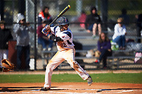 FDU-Florham Devils shortstop Nick DeAngelis Jr. (22) at bat during the second game of a doubleheader against the Farmingdale State Rams on March 15, 2017 at Lake Myrtle Park in Auburndale, Florida.  FDU-Florham defeated Farmingdale 8-4.  (Mike Janes/Four Seam Images)
