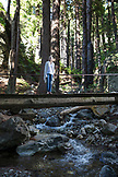 USA, California, Big Sur, Esalen, a woman stands on a walking bridge over Hot Springs Creek at the Esalen Institute