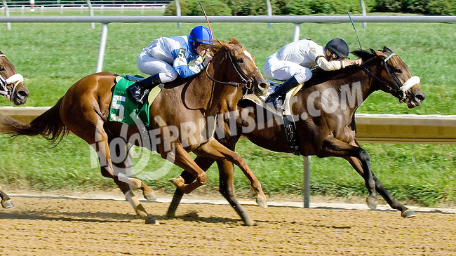 Do Somethin winning at Delaware Park on 9/12/12