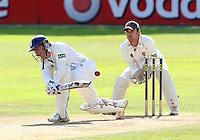Cricket 2008-09