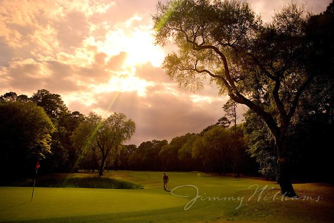 A beautiful golf course scene.