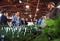 Saturday, April 5, 2008--Shoppers browse the selection of fresh herbs and plants at the farmer's market in Kirkwood, Mo.