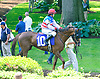 Pleasant Wind with Erika Taylor aboard in the paddock before the Longines International Ladies Fegentri Amateur race at Delaware Park on 6/8/15