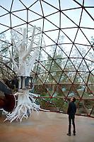Brumadinho_MG, Brasil...Centro de Arte Contemporanea Inhotim (CACI) em Brumadinho, Minas Gerais. Na foto a obra De Lama Lamina de Matthew Barney...The Inhotim Contemporary Art Center (CACI) in Brumadinho, Minas Gerais. In this photo the art De Lama Lamina of Matthew Barney.. .Foto: NIDIN SANCHES / NITRO