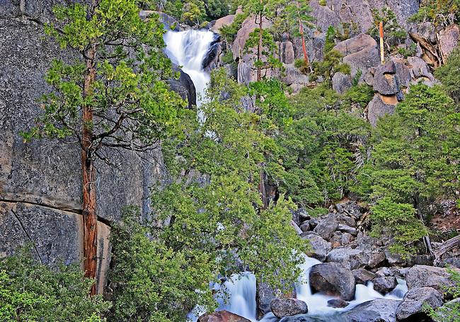 Roadside Waterfall, Yosemite National Park, CA.