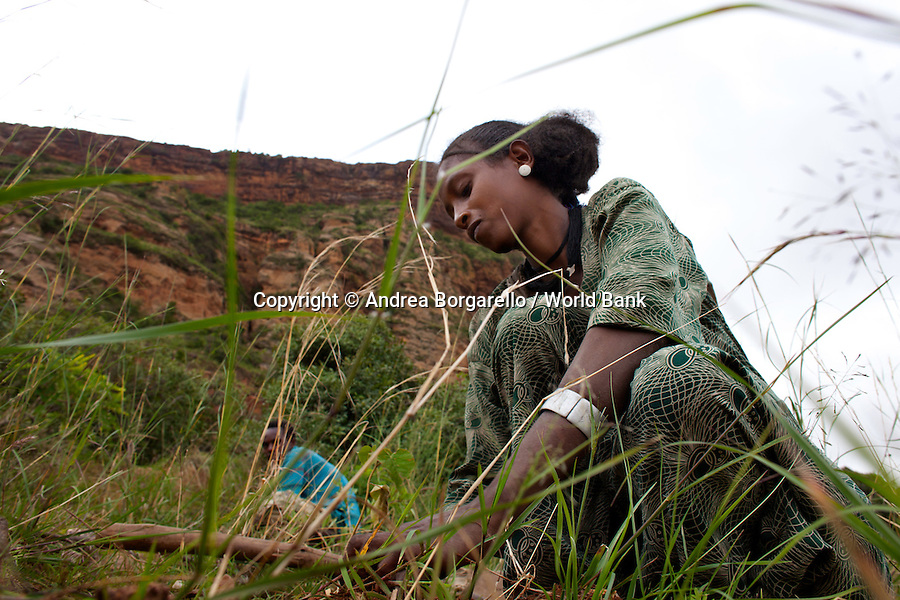 Ethiopia, Tigray region, Kola District. Woman is planting a new just below the mountain as part of the reforestation campaign funded by the World Bank Sustainable Land Management Program.