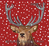 Kate, CHRISTMAS ANIMALS, WEIHNACHTEN TIERE, NAVIDAD ANIMALES,deer, paintings+++++,GBKM535,#xa#