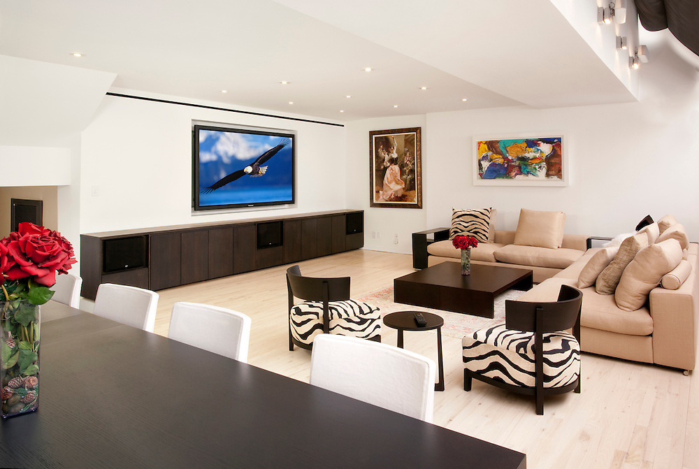 Minimalist Family Room With In-Wall TV