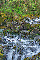 ORCAN_D118 - USA, Oregon, Willamette National Forest, Opal Creek Scenic Recreation Area, Multiple small falls and swift flow of Opal Creek with surrounding old growth forest.
