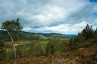 Badenoch & Speyside from above Loch Gamhna, Cairngorm National Park, Badenoch and Speyside