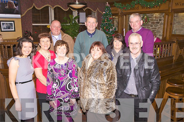 Staff members from Abbeyfeale Plant Hire enjoying a Christmas night out last Friday in Leen's Hotel, Abbeyfeale, pictured l-r: Juliette Murphy, Mary Murphy, Tim Halpin, Noreen McEnery, Ger Murphy, Christina Halpin, Phil & Martin Sheahan and Pat McEvery.