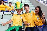 SÃO PAULO,SP, 07.06.2015 – BRASIL-MÉXICO – Torcedores do Brasil antes da partida contra o México, amistoso internacional no Allianz Parque na região oeste de São Paulo, neste domingo, 07. (Foto: Adriana Spaca/Brazil Photo Press)