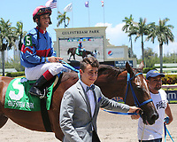HALLANDALE BEACH, FL - JULY 01:   #5 Rose to Fame (KY) wth jockey Edgar Zayas on board, enters the winner's circle after winning the Brave Raj  Stakes for 2 year old fillies, on Summit Of Speed Day at Gulfstream Park on July 01, 2017 in Hallandale Beach, Florida. (Photo by Liz Lamont/Eclipse Sportswire/Getty Images)