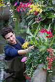 "London, UK. 6 February 2014. Picture: Horticulturalist Alex De Hoyle at work. The annual orchids festival at the Royal Botanic Gardens, Kew, takes centre stage in the Princess of Wales Conservatory from 8 February to 9 March 2014. This year's theme is ""Orchids: A Plant Hunters' Paradise"". More than 6500 orchids of the Phalaenopsis, Vanda and Cambria hybrids have been worked into colourful displays by a team of 20 people which took 4 weeks to build."