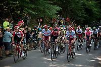 Stage 5: Saint-Dié-des-Vosges to Colmar(175km)<br /> 106th Tour de France 2019 (2.UWT)<br /> <br /> ©kramon