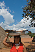Xingu Indigenous Park, Mato Grosso State, Brazil. Aldeia Waura. Woman with big cat fish in bowl. Going to feed the children at the village school