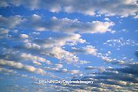 63891-00304 Cumulus clouds     IL