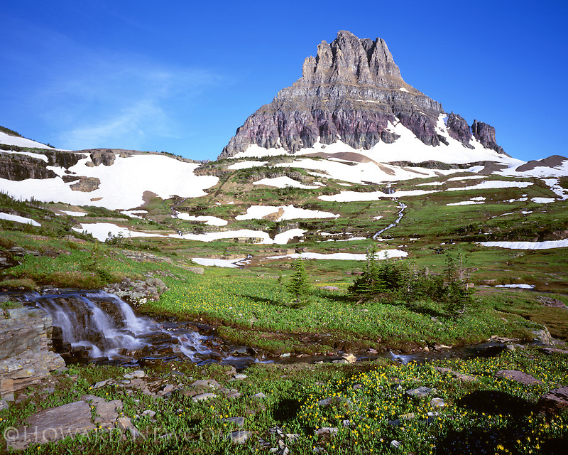 Snowmelt feeds the streams in the Hanging Gardens below Clements Peak, Glacier National Park.