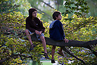 """August 20, 2012; Children watch the performance of Shakespeare's play, """"A Midsummer Night's Dream"""" from a tree limb on the Main Building Quad. Photo by Barbara Johnston/University of Notre Dame"""