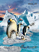 Lori, REALISTIC ANIMALS, REALISTISCHE TIERE, ANIMALES REALISTICOS, paintings+++++Penguin Colony_72,USLS36,#A#, EVERYDAY ,puzzles ,puzzles