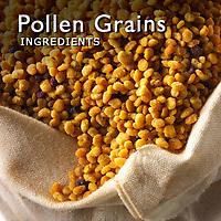 Pollen Grains Pictures  | Pollen Grain Images Photos & Photography