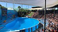 Stadion Sam in Vergnügungspark Zoomarine - 25.09.2019: Zoomarine Park, Guia, Albufeira an der Algarve