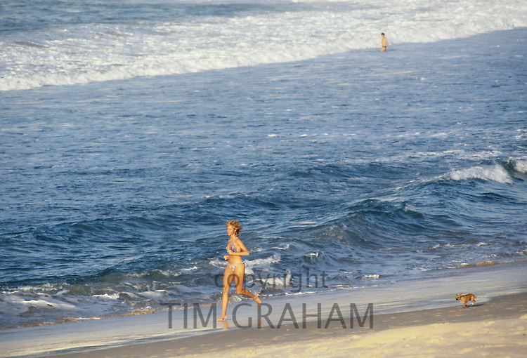 Young woman exercising her chihuahua dog along Bondi Beach, Sydney, Australia
