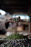 Vegetable stalls at the Saturday market in Kigali Rwanda
