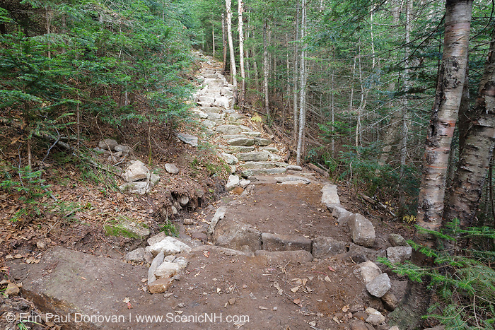 New trail work along the Mt Tecumseh Trail in Waterville Valley, New Hampshire in October 2011. The color of the stones in the staircase identifies the existing staircase and the new section of the staircase. The darker color stones on the bottom portion of the staircase are the existing staircase, and the lighter color stones are the new section.