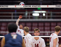 STANFORD, CA - January 5, 2019: Kyler Presho, Paul Bischoff, Jaylen Jasper at Maples Pavilion. The Stanford Cardinal defeated UC Santa Cruz 25-11, 25-17, 25-15.