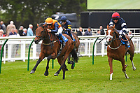 Winner of The Shadwell Racing Excellence Apprentice Handicap Marshall Dan ridden by Stefano Cherchi and trained by Heather Main during Afternoon Racing at Salisbury Racecourse on 16th May 2019