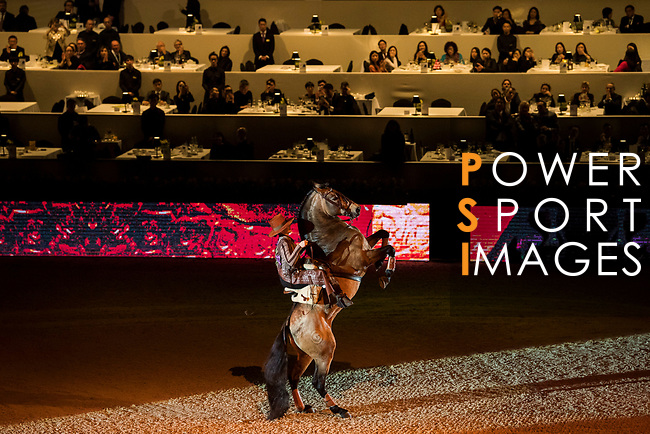 Equestrian Show by Clemence Faivre during the Longines Masters of Hong Kong at AsiaWorld-Expo on 09 February 2018, in Hong Kong, Hong Kong. Photo by Zhenbin Zhong / Power Sport Images