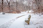 The main road at the Arnold Arboretum in the Jamaica Plain neighborhood, Boston, Massachusetts, USA