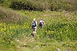 Two people walking the coastal footpath, Lowland Point, Lizard Peninsula, Cornwall, England, UK