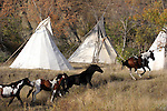 Horses running through a Native American Indian tipi village in South Dakota