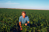 Portrait of a farmer in his corn field, early July.