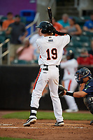 Aberdeen IronBirds Clay Fisher (19) at bat during a NY-Penn League game against the Vermont Lake Monsters on August 19, 2019 at Leidos Field at Ripken Stadium in Aberdeen, Maryland.  Aberdeen defeated Vermont 6-2.  (Mike Janes/Four Seam Images)
