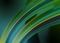 Abstract curved translucent green tubes