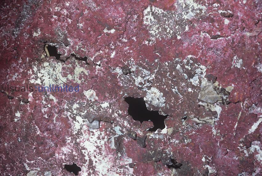 Native copper (Cu), Michigan, USA.