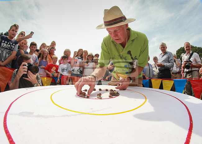 2014 World Championship Snail Racing in Congham (Norfolk)<br /> Picture description:<br /> Neil the Snail Master aligns the finalist<br /> General infos:For more than 25 years the World Snail Racing Championships have been held at Congham, near King's Lynn, in Norfolk.Before snails can enter a race a sticker with a number must be put on so they can be identified. The snails race from the centre of a circle to the outside. The circle has a radius of 13 inches. The snails are put in the middle and pointed in the right direction.The  Snail Master Neil starts the races. He shouts: &quot;Ready, steady, SLOW!&quot; And off dash the snails! The Snail Master keeps the course well-watered as snails like damp conditions.Races are held on a table covered with a white cloth. Machine a circle, with braid in the middle, and then machine a similar circle 13 inches away.Owners do dress up. The World record stands at 2 minutes over the 13 inches. It was set up in 1995 by a snail called Archie. The record can only be challenged at the World Championships at Congham.Giant foreign snails are not allowedOften owners like to give their snails names like Speedy or Schumacher!<br /> Picture by Marcello Pozzetti &copy; IPS PHOTO AGENCY<br /> Cavell Barn<br /> The Common<br /> Swardeston<br /> Norwich<br /> Norfolk<br /> NR14 8DZ<br /> T 01508 571 480<br /> M 07973308835