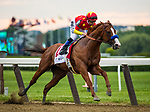 ELMONT, NY - JUNE 09: - Justify #1 with Mike Smith wins the 150th Belmont Stakes, becoming the 13 Triple Crown champion at Belmont Park on June 09, 2018 in Elmont, New York. (Photo by Alex Evers/Eclipse Sportswire/Getty Images)