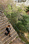 Israel, Carmel. The Stairs Path in Haifa