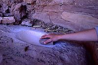 Corn maize grinding metate with original grinding stone and ancient corn cobs, Cedar Mesa, Utah