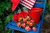 Carl, FLOWERS, photos, SWLA12001,#f# Blumen, Natur, flores, naturaleza