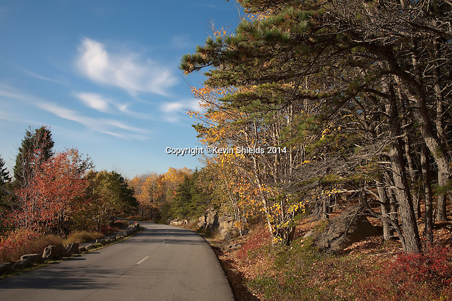 Fall view along Ocean Drive, Acadia National Park, Maine, USA
