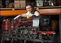 Track Record? - 'Worlds best' model locomotive for sale.